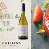 Rượu vang Novas Chardonnay Emiliana