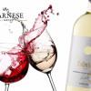 Rượu vang trắng Collection Fantini