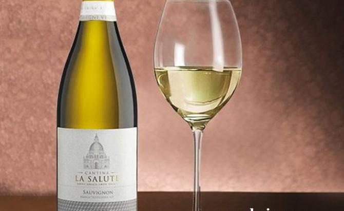 Rượu vang Cantina La Salute Sauvignon