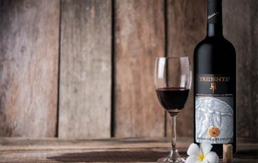 Rượu vang Tridente Salento Rosso