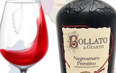 Rượu vang Bollato Negroamaro Primitivo Puglia 2014