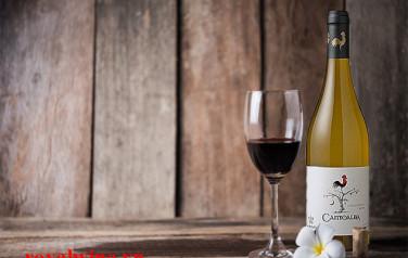 Rượu vang Cantoalba Chardonnay 2015