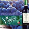 Rượu vang Nostre Terre Cabernet Sauvignon Varietale Vegan