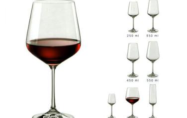 Ly uống rượu vang phale Tiệp Sandra glass
