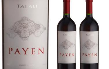 Rượu vang Chile Tabali Payen