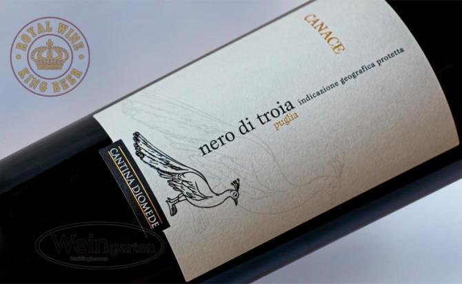 Rượu vang Cantina Diomede Canace Nero Di Troia Puglia