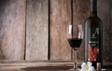 Rượu vang Rosso Malvanegra del Salento 2016