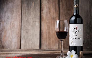 Rượu vang Cantoalba Cabernet Sauvignon 2015