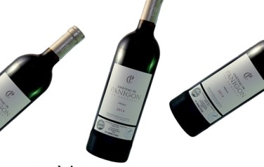 Rượu vang Chateau De Panigon Medoc